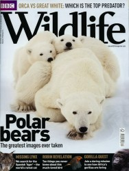 Cover of 2009 December BBC Wildlife