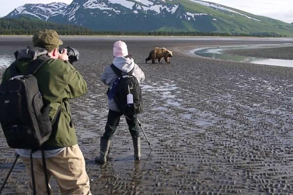Photo for 2020 Alaska Brown Bear Photography Tour I