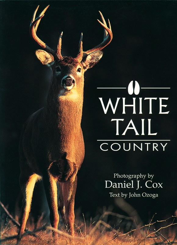 Cover of Whitetail Country
