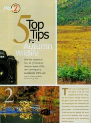 Cover of 2008 November Outdoor Photographer