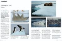 Cover of 2010 Winter Nikon World