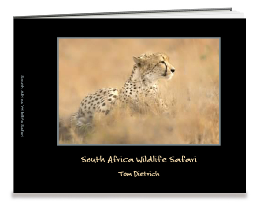 Tom Dietrich's Shutterfly book, South Africa Wildlife Safari.