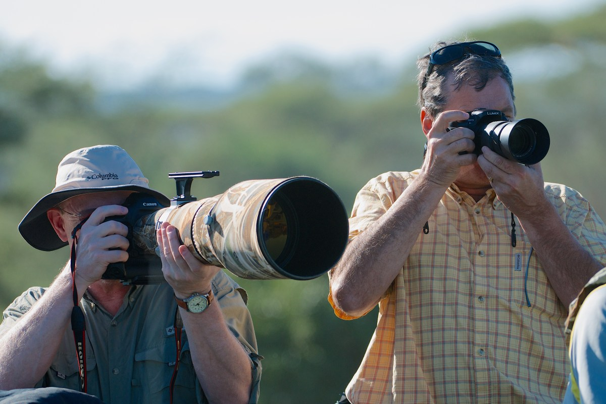 A comparison shot that shows the size difference between a normal sized Canon 600mm F/4 telephoto and the similarly powerful Panasonic GH3 with a 100-300mm lens that converts to a 200-600mm F/4-5.6 equivalent zoom. Just in case you can't see the GH3, it's on the right and the Canon is on the left.