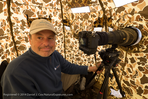 Working with the Lumix GH4 attached to my Nikkor 600mm F/4 in the blind at the net site. Alaska.