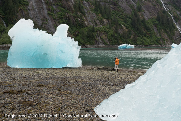 Glacial ice at low tide on the beach in SE Alaska.