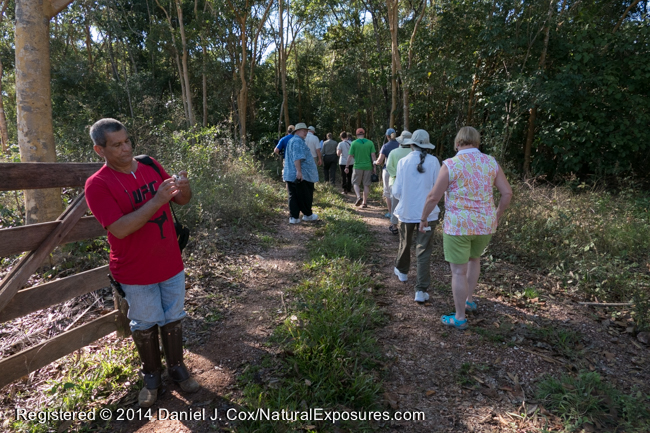 Our group makes its way down the forest trail as our host Mr. sits the gate behind us. Lumix FZ1000