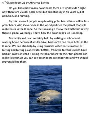 Saving the Polar Bears