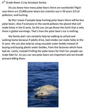Saving the Polar Bears