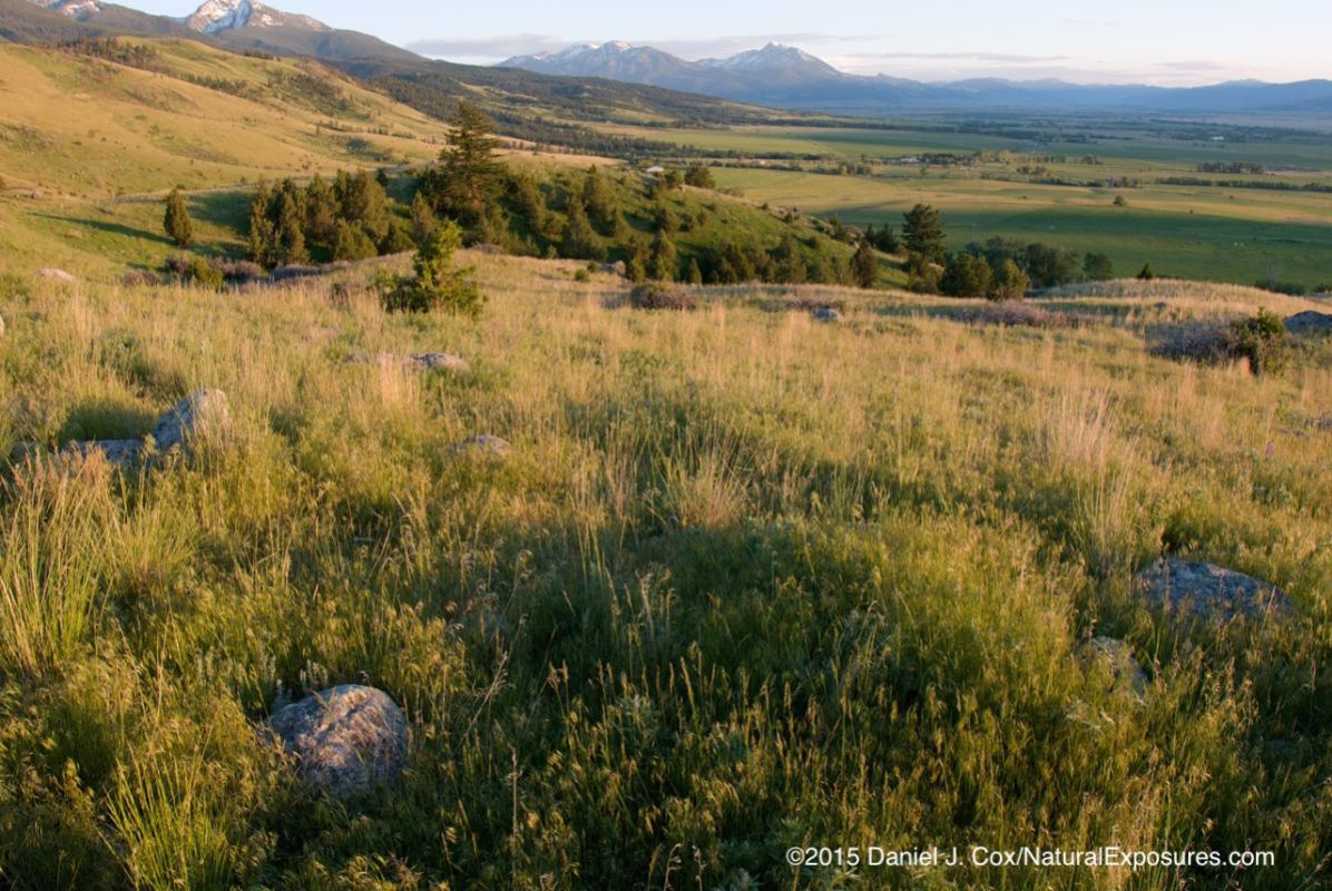 Evening light bathes Paradise Valley, Montana