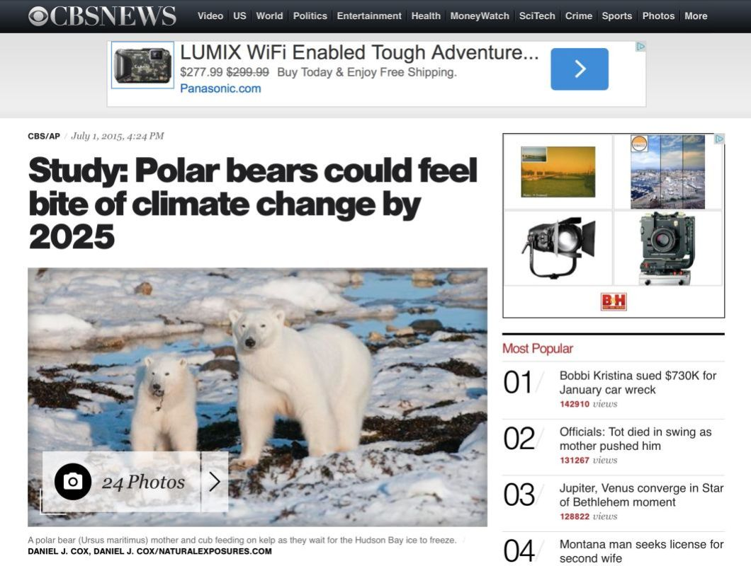 A photo of a mother polar bear and her cub was used by CBS News to highlight the paper being released on the plight of polar bears.