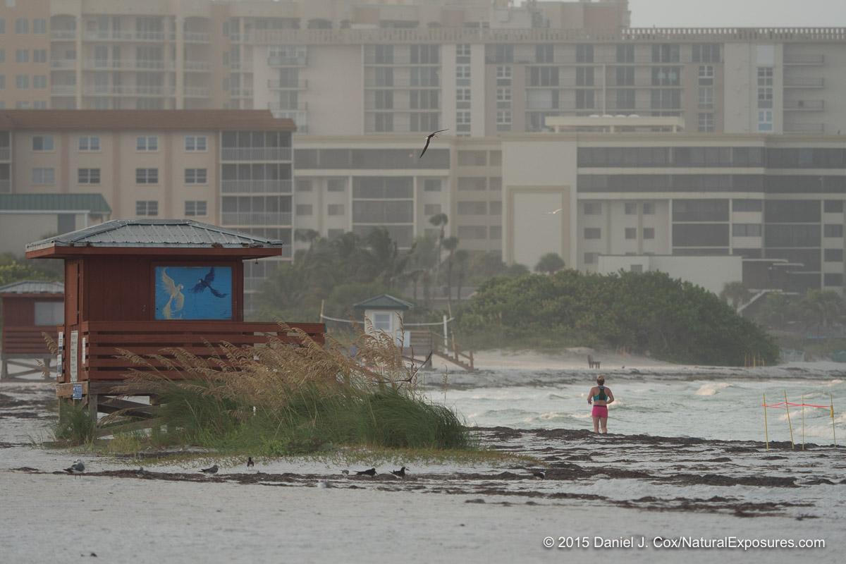 Sarasota Beach, Florida.