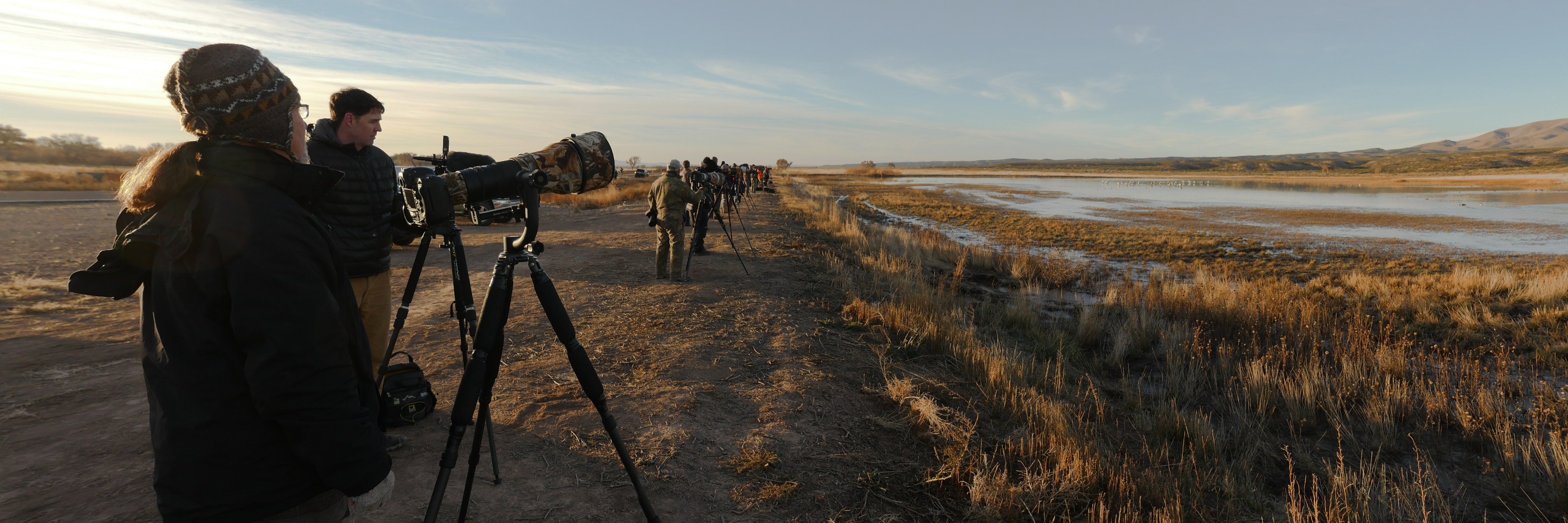 Henry Harrison on the job with a group of other photographers at Bosque del Apache NWR, New Mexico.
