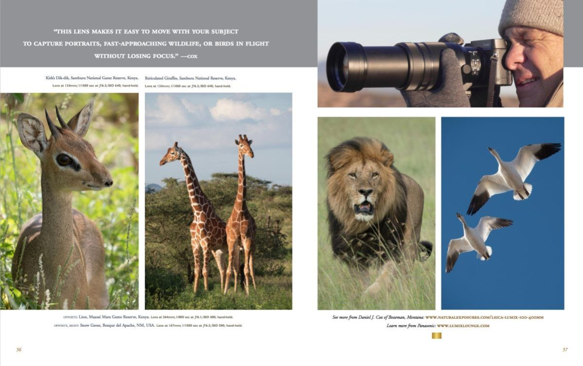 Summer issue of Nature's Best magazine showcasing my work with Lumix MFT cameras.