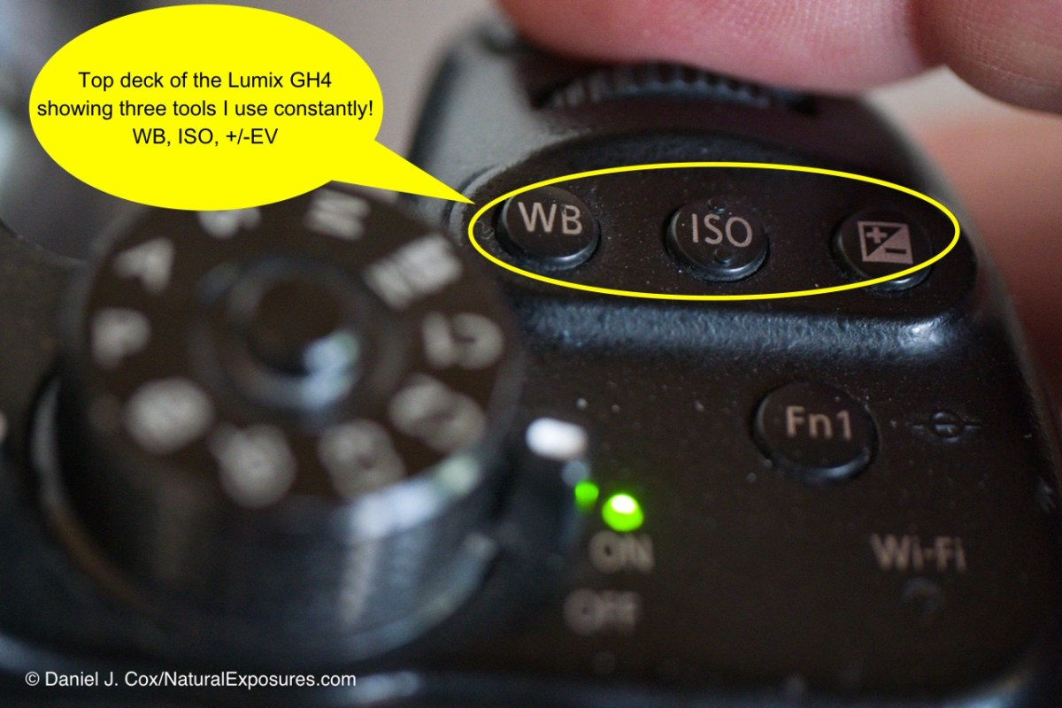 Gh4 buttons and layout.