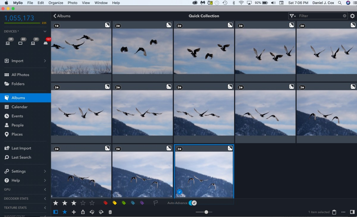 Leica 200mm with 1.4X and 2X teleconverters Lumix G9, birds in flight, BIF