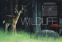 Cover of 1999 May Outdoor Photographer