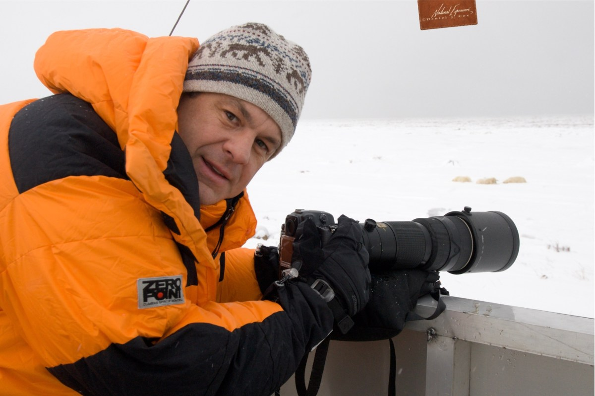 How to photograph polar bears from a thunder buggy