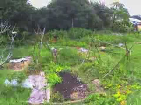 Natural Farming Timelapse Photography
