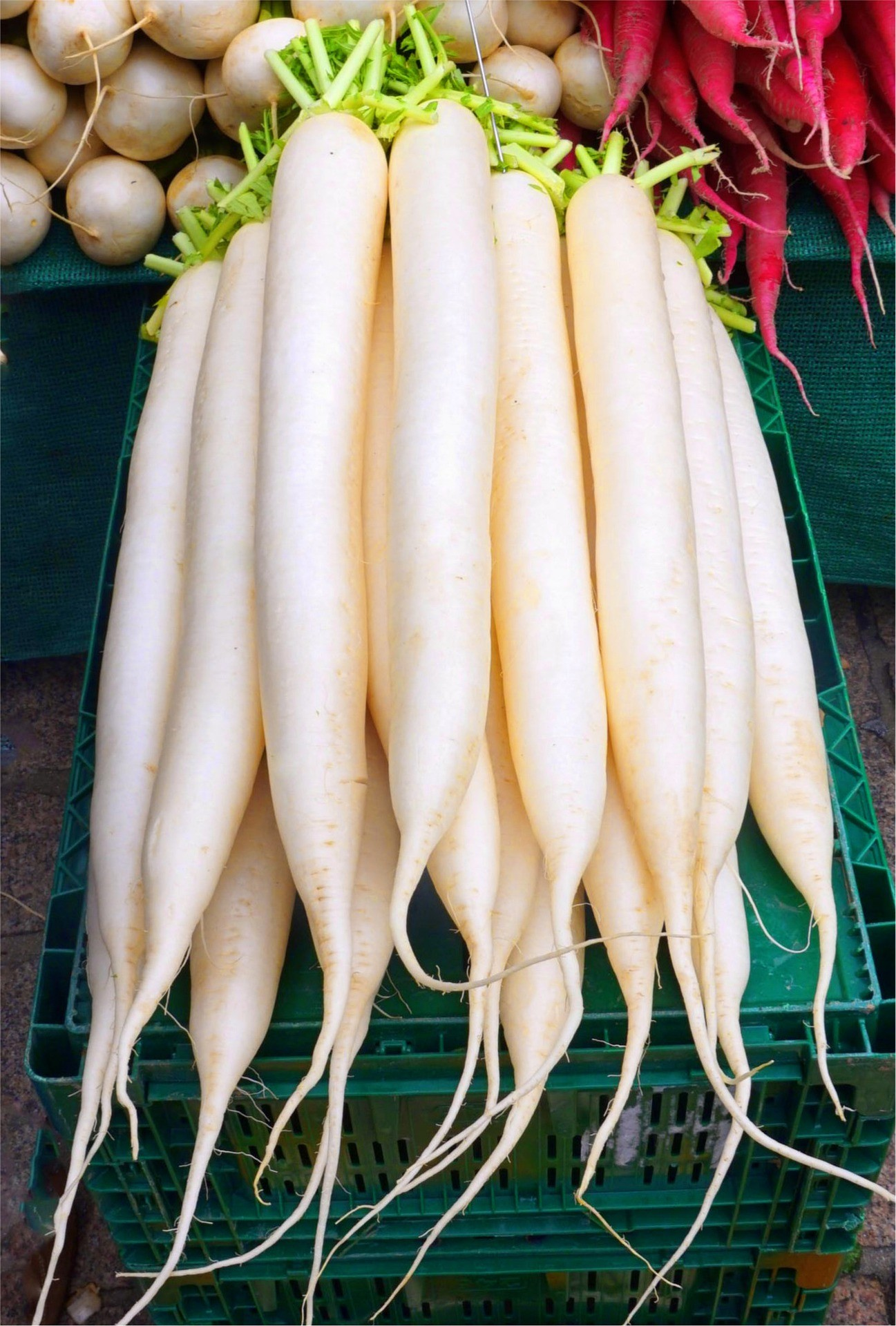 What Is Daikon? TOP 27 Amazing Daikon Health Benefits For (Men & Women)