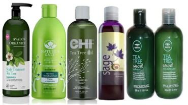 Tea Tree Oil Shampoo Benefits & Uses