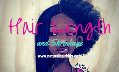 natural hair length and shrinkage