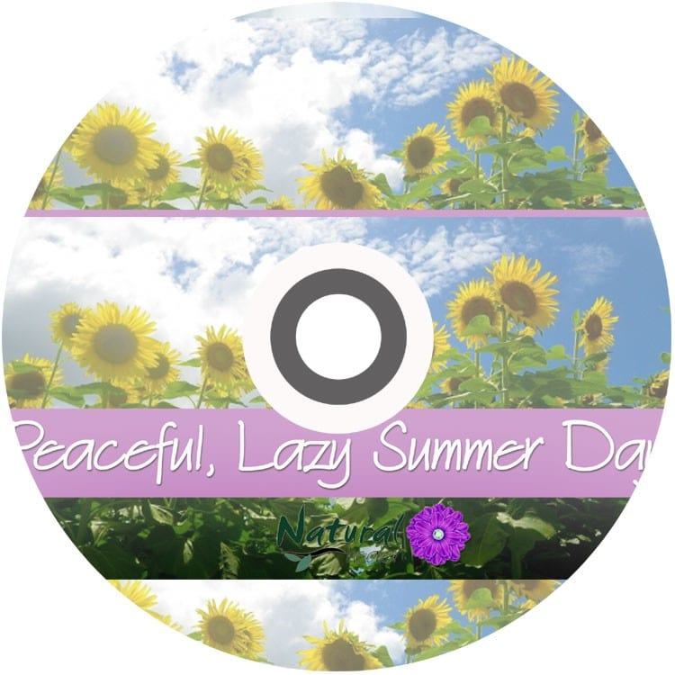 Peaceful Lazy Summer Birds & Farm Sounds Relaxation Audio