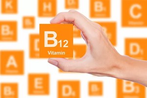 Foods With Vitamin B12 1