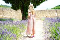 Lavender Benefits 1