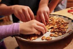 Pumpkin Plant Health Benefits 1