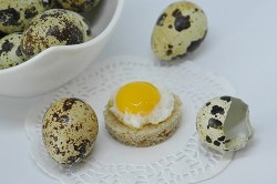 All About Eggs 2