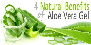 benefits-of-aloe-vera