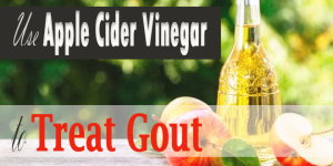Use-Apple-Cider-Vinegar-to-Treat-Gout