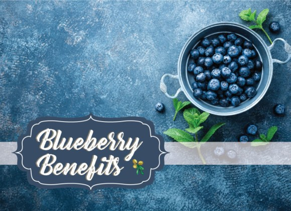 BLUEBERRIES & HOW THEY BENEFIT OUR SKIN