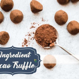 3 INGREDIENT CACAO RAW TRUFFLE