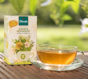 Dilmah Infusion Green Rooibos Ginger & Peppermint Tea
