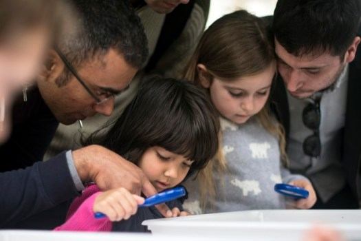 Investigating pond life at last year's Spring Wildlife event