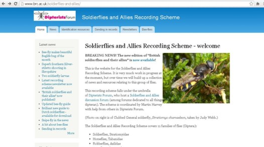 Figure 12. The Soldierfly and allies recording scheme, which includes the robberflies