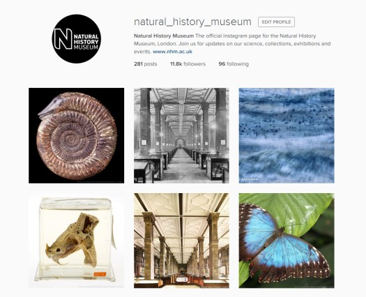 screenshot of the Natural History Museum Instagram account