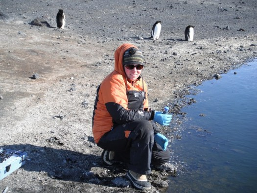 Dr Anne Jungblut collecting samples in Antarctica