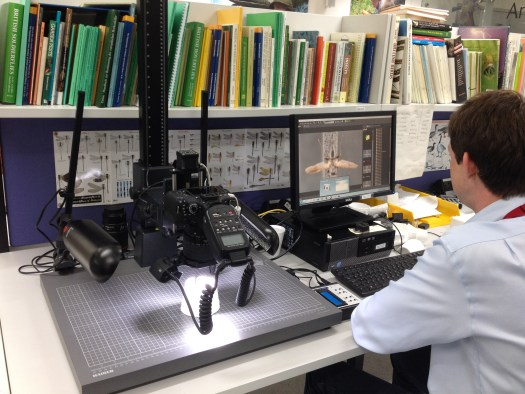 A photo showing Anthony sitting at the photo-stacker equipment
