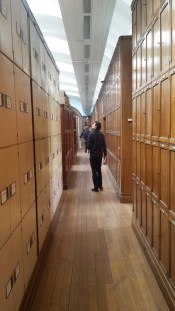 Photo of Anthony stood in the centre of a row of ceiling high cupboards in the herbarium