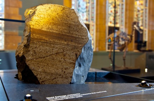 Close-up photo of the meteorite sitting within its display with the gallery.