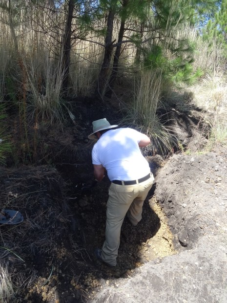 Photo showing one of the team digging a hole in the ground using a spade, with pumice exposed below the soil surface