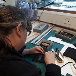 Conserving the Toxodon specimens