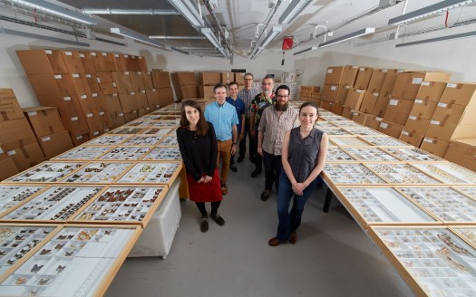 The Madagascan digitisation team, alongside the 5,700+ specimens digitised during this project.
