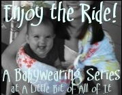 A Little Bit of All of It Babywearing Series