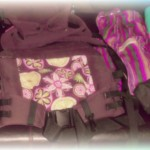 Carry Me Baby Carrier Lending Service