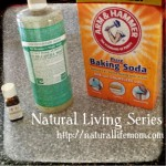 Looking Back – Natural Living Series