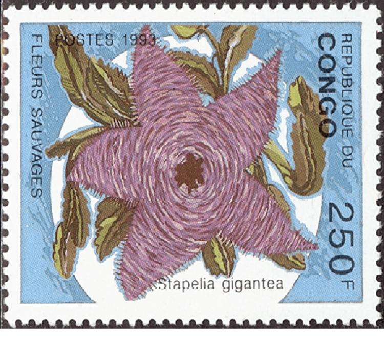スタぺリア ギガンテアの切手