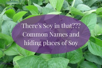 There's Soy in That? Other names for soy and common hiding places